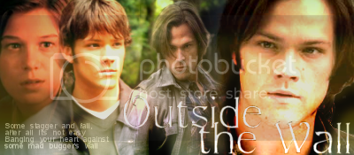 Out Side The Wall Banner, banner by princess_schez