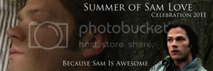 Summer of Sam 2011 banner